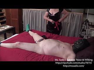 Ballbusting Cock Tease By Ms. Sadie